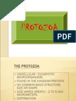 Vii Protozoa