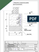 Detaliu Consolidare Fundatii R-1.1_9