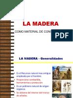 Construccion en Madera - Estruc. IV