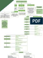 mapa guia neuropsicologia cap 1-2.docx