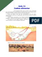Biologia_-_Aula_11_-_Cadeia_Alimentar.pdf