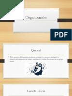 organizacion exposicion