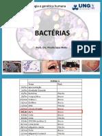 AULA 1 Bacterias