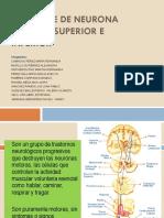 Síndrome de Neurona Motora superior e inferior 19-2