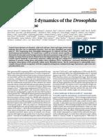 Diversity and Dynamics of the Drosophila