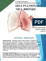 Reabilitarea Pulmonară in Astmul Bronșic 1