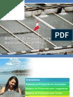 sistemas de acuicultura.pdf