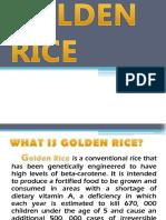 Golden Riceu 1
