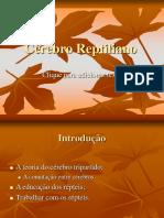 Cerebro Reptiliano - Curso Psicanalise