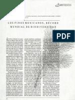 Pinos.pdf