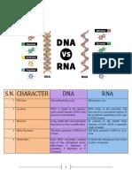 ADN vs. ARN