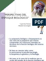 Enfoque Biológico Psicoanormal