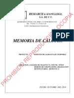 Memoria de Calculo Ustorege Tlalpan-1