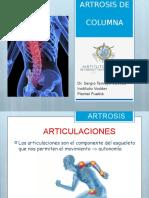 Anatomia Cromodinamica