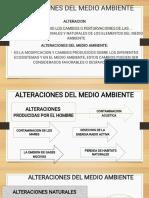ALTERACIONES DEL MEDIO AMBIENTE.pdf