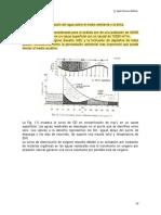 1.1.1.3 Autopurificacio¦ün.pdf