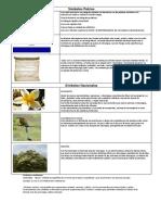 simbolos-y-emblemas-nacionales.pdf