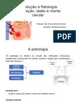 Aula 1 - Introdução à Patologia e Adaptações Celulares