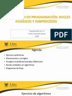 Sesion3_IntroducciónEnProgramación_BuclesAnidadosArreglos
