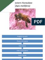 Honeybee Lecture