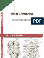 17-23 - Pares Craneales - Neuroanatomía - Roberto León Correa