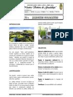 Proyecto de Jardine Scolgantes Yt Echo Verde