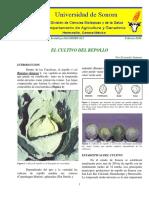 COL O REPOLLO-DAG-HORT-011.pdf