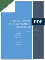 Trabajo Grupal Plan Ambiental