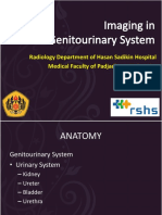 07. Imaging in Genitourinary System - 17 Agustus 2013 - by  Robby Hermawan.pptx