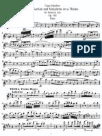 Schubert - Introduzione e Variazioni Per Flauto e Piano
