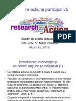 Pascaru_Cercetare_actiune participativa_2018.pdf