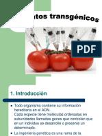 productos transgenicos