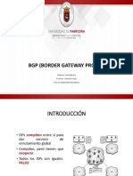 Presentacion BGP