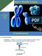 Cromossomos e Divisao Celular