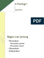 Anatomi Fisiologi I part 2.pptx
