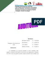 Informe de Tipos de Auditoria