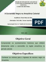 Metodologia Das Ciências Humanas Paulo Salles Oliveira