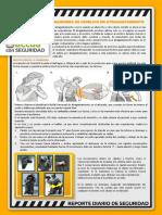 160219 Reporte Diario SSO