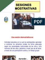 13 Sesiones Demostrativa (1)