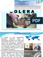 Salud Materna Panorama Epidemiologico 2016