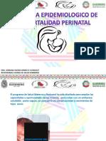 Salud Perinatal 2017