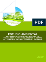 Estudio Ambiental Banda de Shilcayo