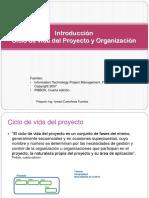 Castañeda-Ciclo de Vida Del Proyecto y Organización