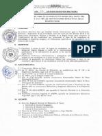 DIRECTIVA-N°-08-2019.pdf