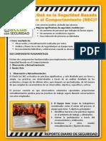 290119 Reporte Diario SSO (1)