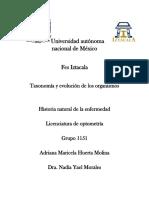 Historia Natural de La Enfermedad.