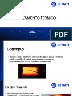 TRATAMIENTO TÉRMICO (2)