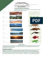 Ecosistemas y Demás Temas Grado 4