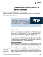 More Than a Simple Biomarker - The Role of NGAL in Cardiovascular and Renal Diseases