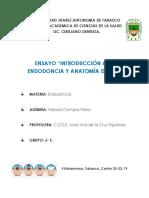 Ensayi a La Endodoncia y Anatomia Dental